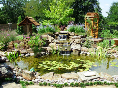 Koi ponds sublime water gardens for Landscaping around koi pond