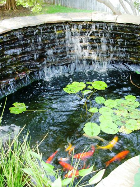 Koi Ponds Gallery Sublime Water Garden
