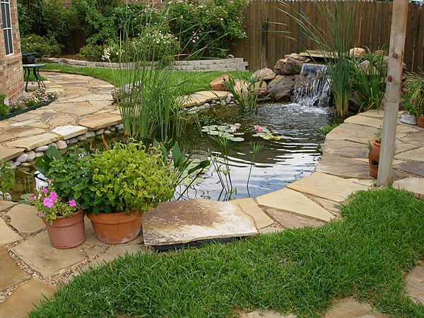 Pin small koi pond on pinterest for Small koi pond
