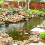 29_koi_ponds