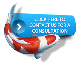 CONTACT US FOR A FREE CONSULTATION