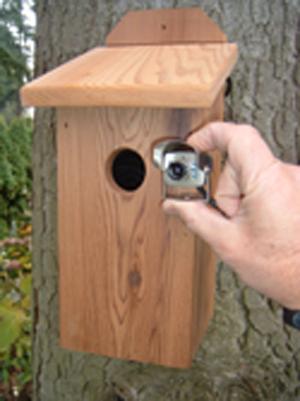 Hawk Eye Cedar Houses
